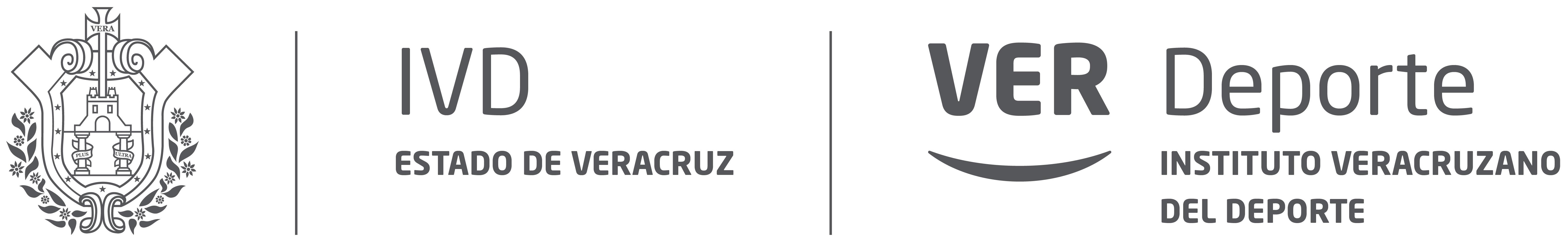 IVD Estado de Veracruz-01